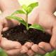Organik Ürünler Pazarı Geleceğinize Yön Verebilir!