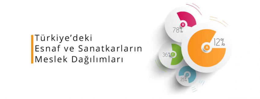 Türkiye'deki Esnaf ve Sanatkarların Meslek Dağılımları