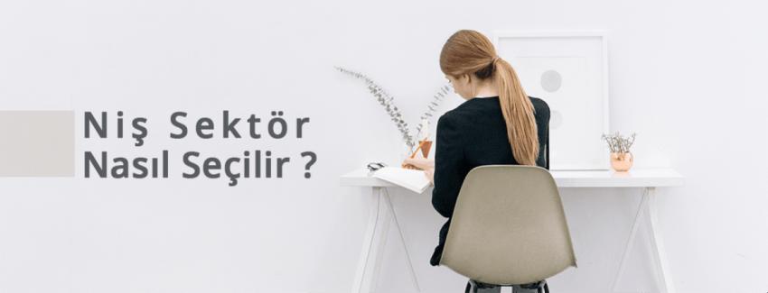 Niş Sektör Nasıl Seçilir?