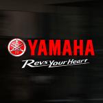 Yamaha Bayilik