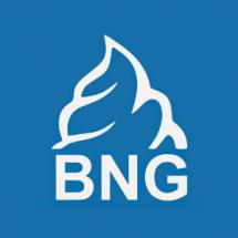 Bng Tech Bayilik