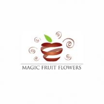 Magic Fruit Meyve Sepeti Bayilik