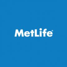 American Life - MetLife Emeklilik Bayilik