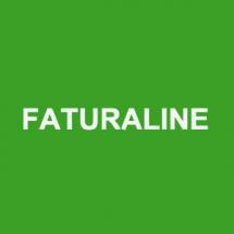 Faturaline Bayilik