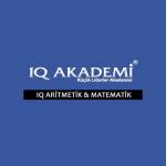 IQ Academy Bayilik