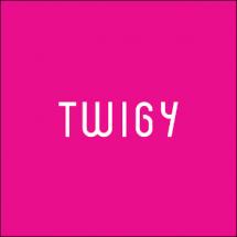 Twigy Bayilik