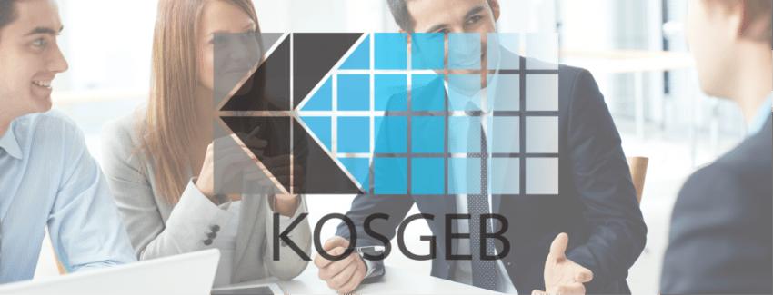KOSGEB Çalışma Mantığı ve Krediler