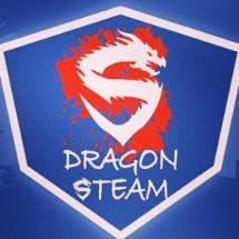 Dragon Steam Bayilik