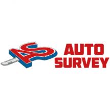 Auto Survey Bayilik