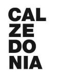 Calzedonia Bayilik