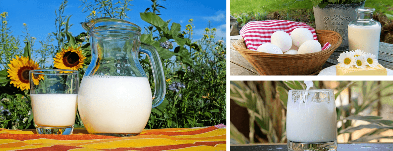 Süt ürünleri bayiliklerinde dikkate değer bir kazanç var
