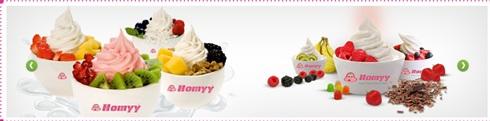Homyy Dondurma Bayilik ve Bayilik Şartları