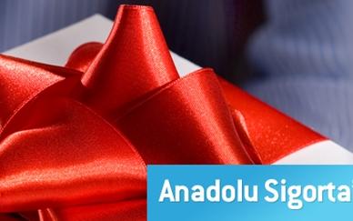 Anadolu Sigorta Bayilik
