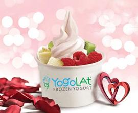 Yogolat Frozen Yoğurt Bayilik ve Bayilik Şartları