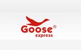 Goose Express Bayilik ve Franchise Şartları