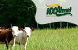 Koca Ahmet Süt Ürünleri Bayilik Veriyor