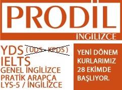 pro2-vert