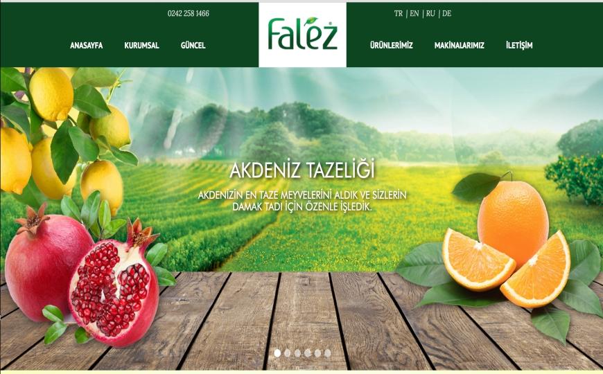 Bgs Falez Meyve Suları Bayilik ve Bayilik Şartları